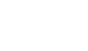 Official Selection_2017 (1)